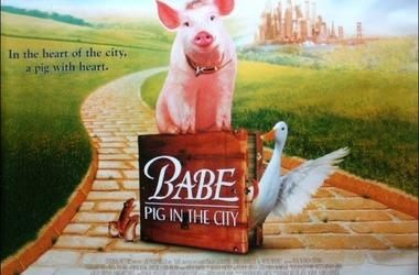 小猪宝贝2:小猪进城剧照