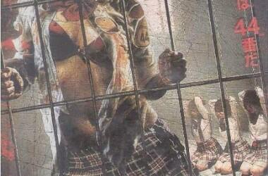 性奴的调教_被监禁在充满谜团的所谓\