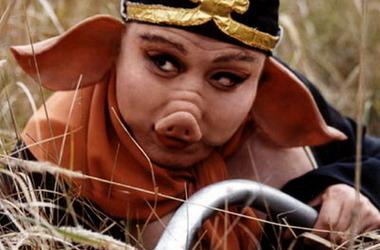 西游记崔景富_猪八戒是谁演的,猪八戒扮演者,西游记续集猪八戒_电视猫
