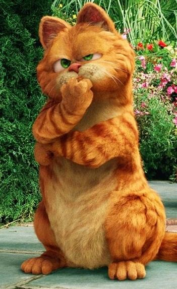 加菲猫2,爱的就是你