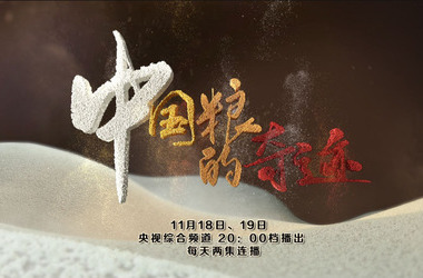 中國糧的奇跡劇照
