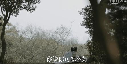 知否知否应是绿肥红瘦第5集剧照